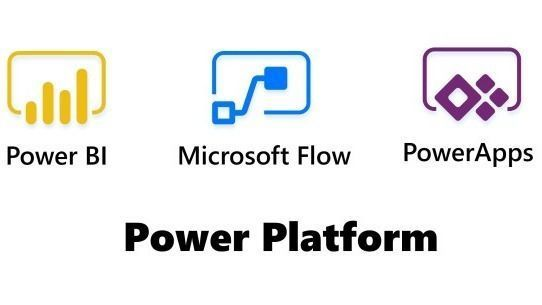 What are the best practices when using the Microsoft Power Platform and Dynamics 365?